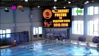 24.11.2015Чемпионат России по водному поло среди мужских команд