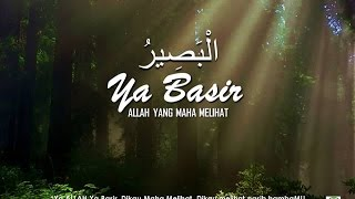 Ya Basir - Audio