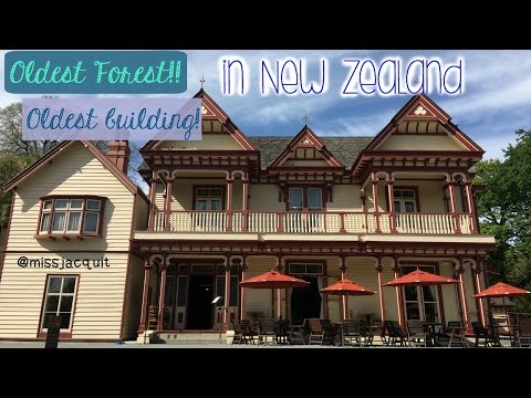 Oldest forest in the city! Riccarton House and Bush | New Zealand