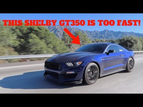 2018 MUSTANG SHELBY GT350 DESTROYED THE 2018 MUSTANG GT IN A RACE!