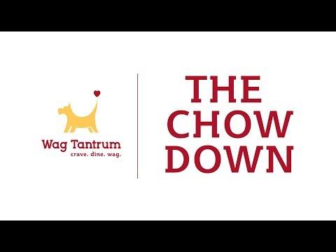 ORGANIC DOG FOOD - Chow Down 2018 (FAST!)