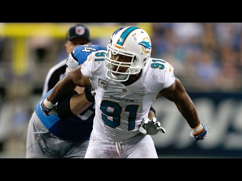 Cameron Wake 2014 season highlights