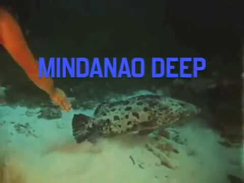 Mindanao Deep/ Scattered Bodies