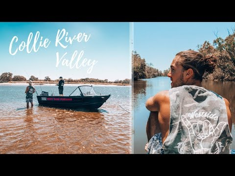 River Fishing Western Australia - Collie River Valley | Westside Fishing - EP 14