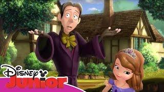 Magical Moments - Sofia la Principessa - Il mago Cedric e l'amuleto magico di Sofia