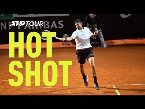 Del Potro hits stunning forehand winner against Novak Djokovic