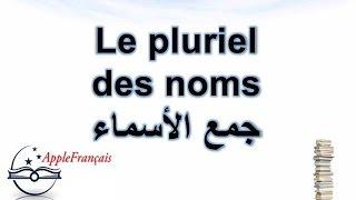 Le pluriel des noms الدرس 16 : جمع الأسماء