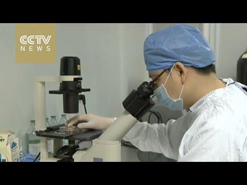 Scientists seek to create HIV-proof human embryos