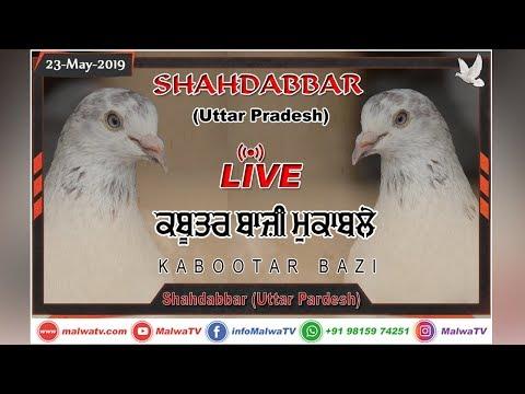 SHAHDABBAR (Uttar Pradesh) कबूतरबाज़ी KABOOTAR BAZI [23-May-2019] 🔴 LIVE STREAMED VIDEO