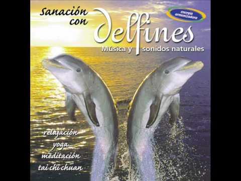 Sanación con Delfines