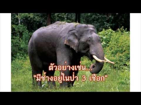 คำลักษณะนามของช้าง