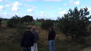 Hubertus 2011 Stado Ogierów w Gnieźnie cz.1 HD
