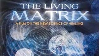 Живая Матрица. Наука исцеления