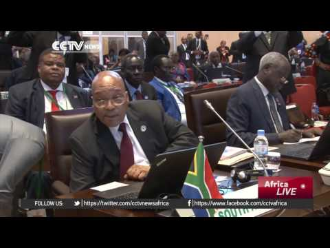 African leaders call for joint approach to tackle continent's crises