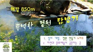 해발 850m 특별한 정원 탐방기#임야개발 정원 만들기…