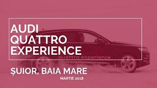 Audi Suior Qattro Experience