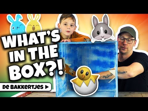 WHAT'S IN THE BOX? (PASEN SPECIAL) !! 🐣 🐥  - De Bakkertjes #227