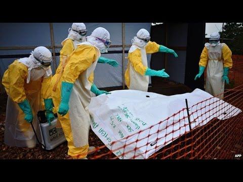 Australia 'to send' medics to join Ebola fight