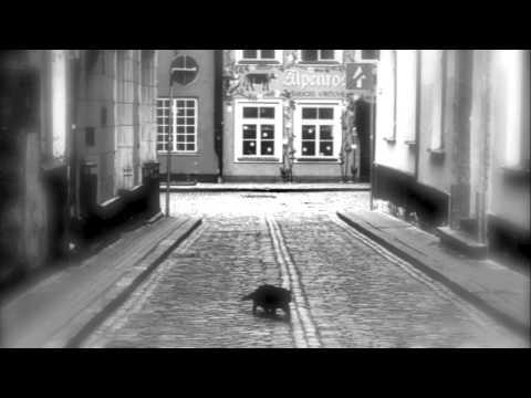 Black Cat Tango - Piano Improvisation - 黒猫のタンゴ - ピアノ