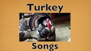 FUNNY THANKSGIVING - TURKEY SONGS for KIDS ( Preschool, Kindergarten, K-3)