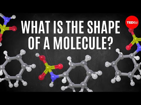 What is the shape of a molecule? - George Zaidan and Charles Morton
