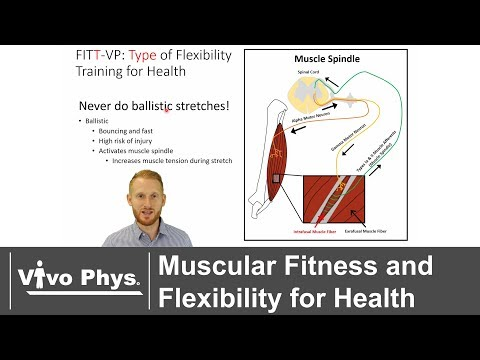 Exercise Testing and Prescription for Health Oriented Muscular Fitness and Flexibility