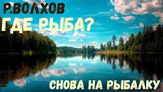 Русская Рыбалка 4 : Рыбалка на р.Волхов I Где рыба? l Стрим