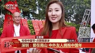 [传奇中国节春节]传奇中国节·点赞我家乡 深圳:爱在南山 中外友人拥抱中国年| CCTV中文国际