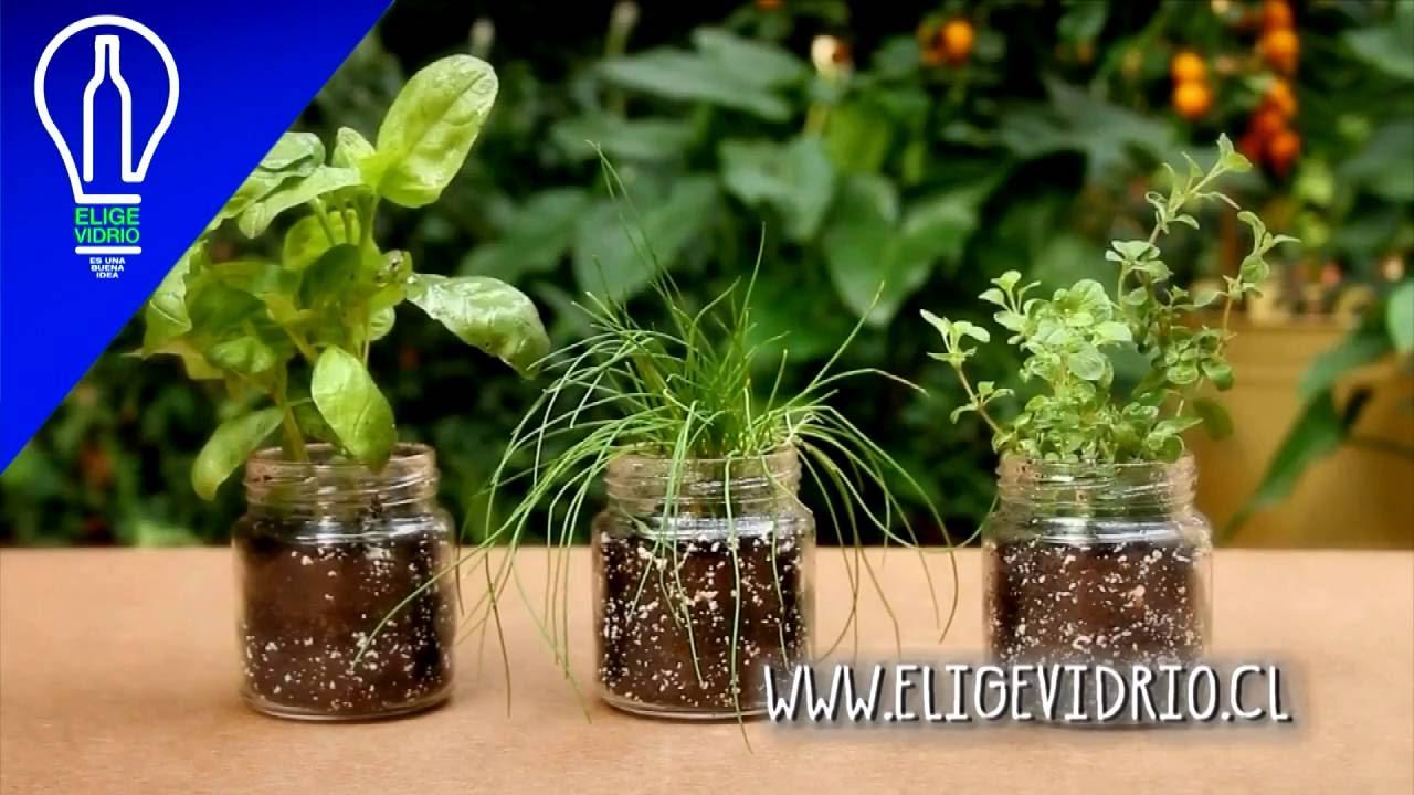 Huerta con frascos de vidrio youtube for Adornos con botellas para plantas