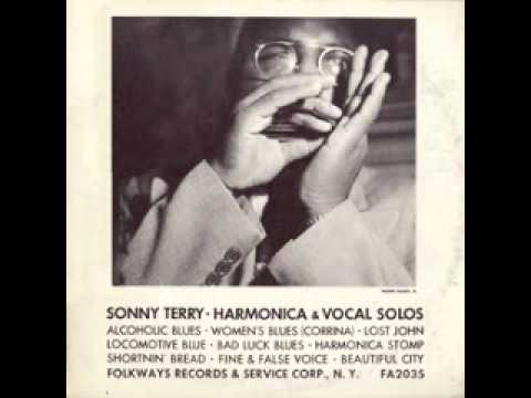 Alcoholic Blues  Sonny Terry