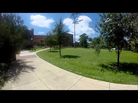 Florida State University (FSU) campus tour 2015
