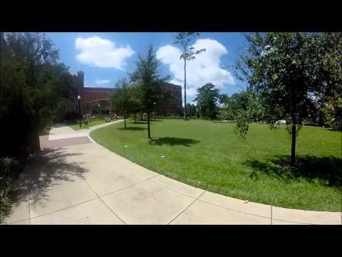 Florida State University (FSU) campus tour 2015