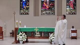 Homily on Assumption Sunday