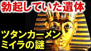 古代エジプト王ツタンカーメン王のミイラの局部に政治的意図
