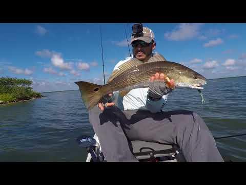 Mosquito Lagoon Redfish Sightfishing (Amazing Footage)