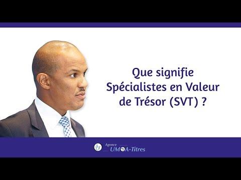 Que signifie Spécialistes en Valeur de Trésor (SVT) ?