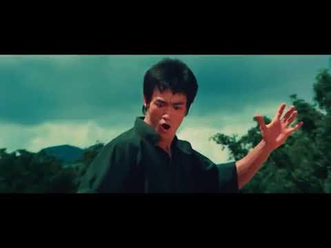 Bruce Lee Kung Fu Fighting Remix