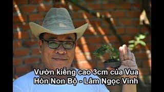 #07 Vườn cảnh tí hon cao 3 cm của vua hòn non bộ Lâm Ngọc Vinh | Du Lịch Bụi | Zen Nguyễn 2019
