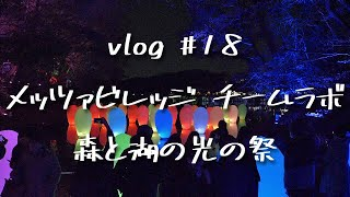 埼玉県飯能市で楽しむ休日!メッツァビレッジ&チームラボ「森と湖の光の祭」VLOG #18