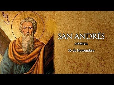 Mateo 4, 18-22 - Padre Rodrigo Aguilar
