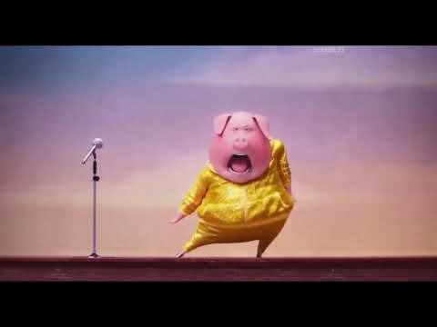 Мультфильм звери поют
