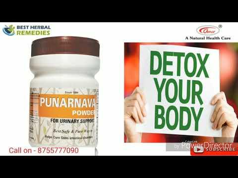 Strengthen liver & kidney function by Punarnava Powder || Best Herbal Remedies