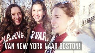 Dagje Boston & Harvard University! ★ NEW YORK VLOG #27 ✈ Trendgloss