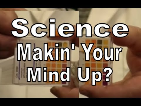 Science   Making Your Mind Up