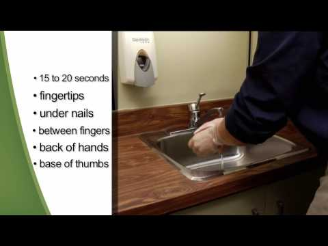 Hand Hygiene: Handwashing and Alcohol-Based Hand Sanitizers