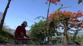 VIET NAM QUE HUONG TOI Do Nhuan Guitar Hawaii CAODZAN 10DVD46