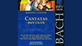 Ich ruf zu dir, Herr Jesu Christ, BWV 177: Lass mich kein Lust noch Furcht von dir (Tenor)
