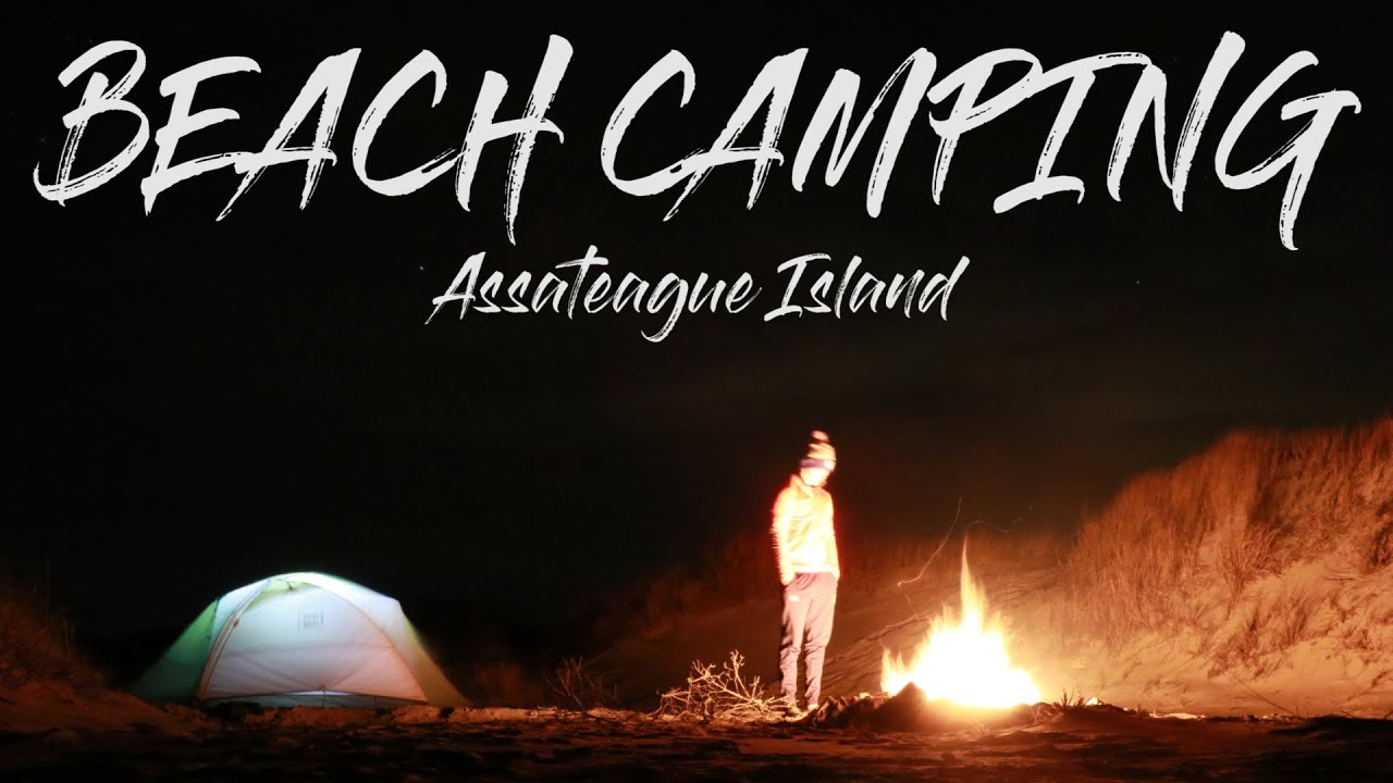 Assateague Island Camping (Epic Guide) 8 Campgrounds, 9