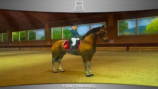 Horse Life 2 / Horse Life Adventures Gameplay Wii (Horse Game)