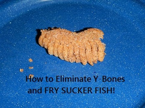How To Destroy YBones In Sucker Fish
